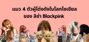 แมว 4 ตัวผู้โด่งดังในโลกโซเชียลของ ลิซ่า Blackpink